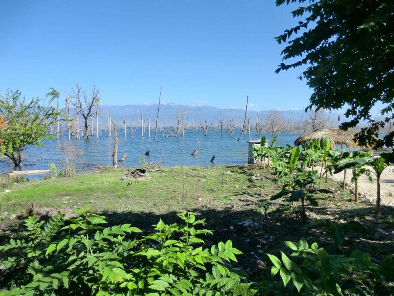 Inundated: floods have ruined crops