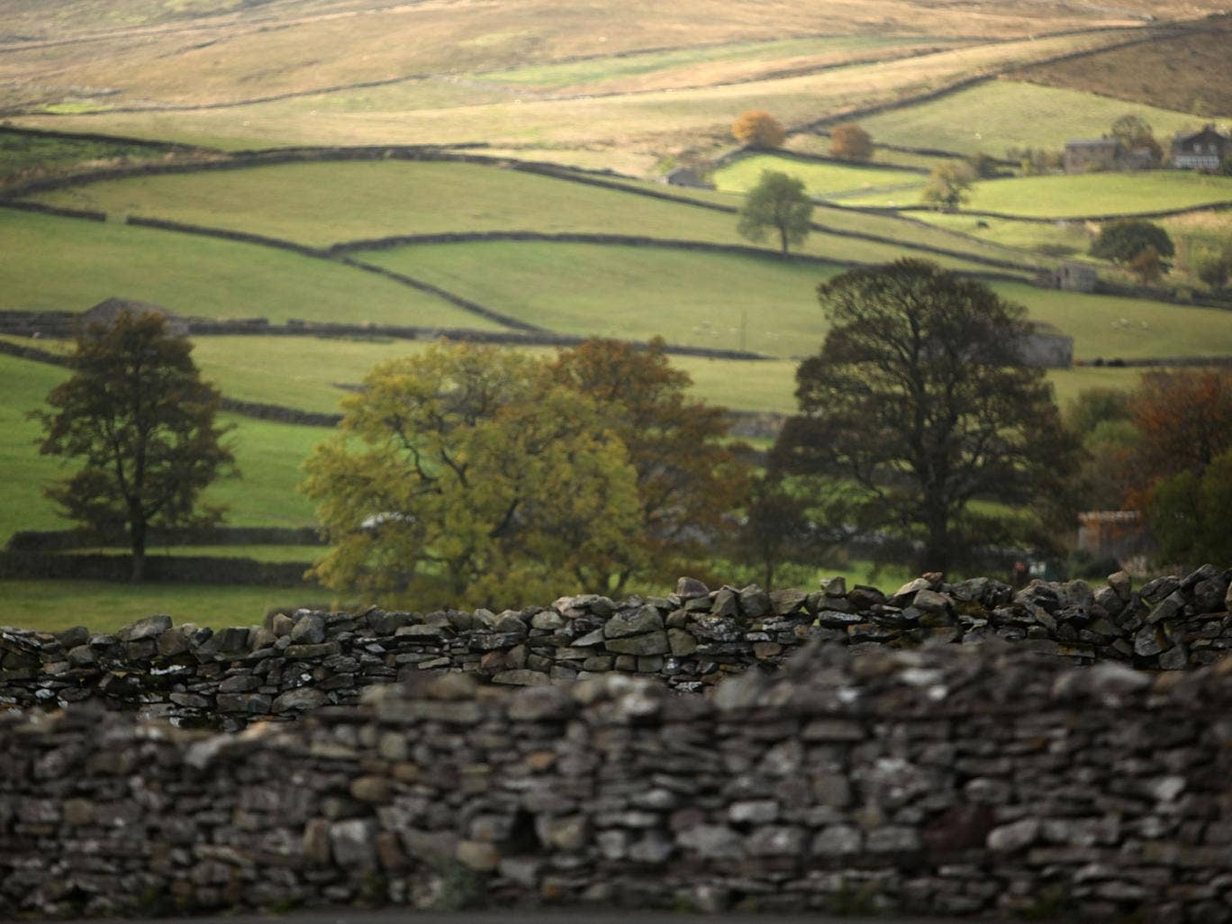 The incident took place in Wensleydale