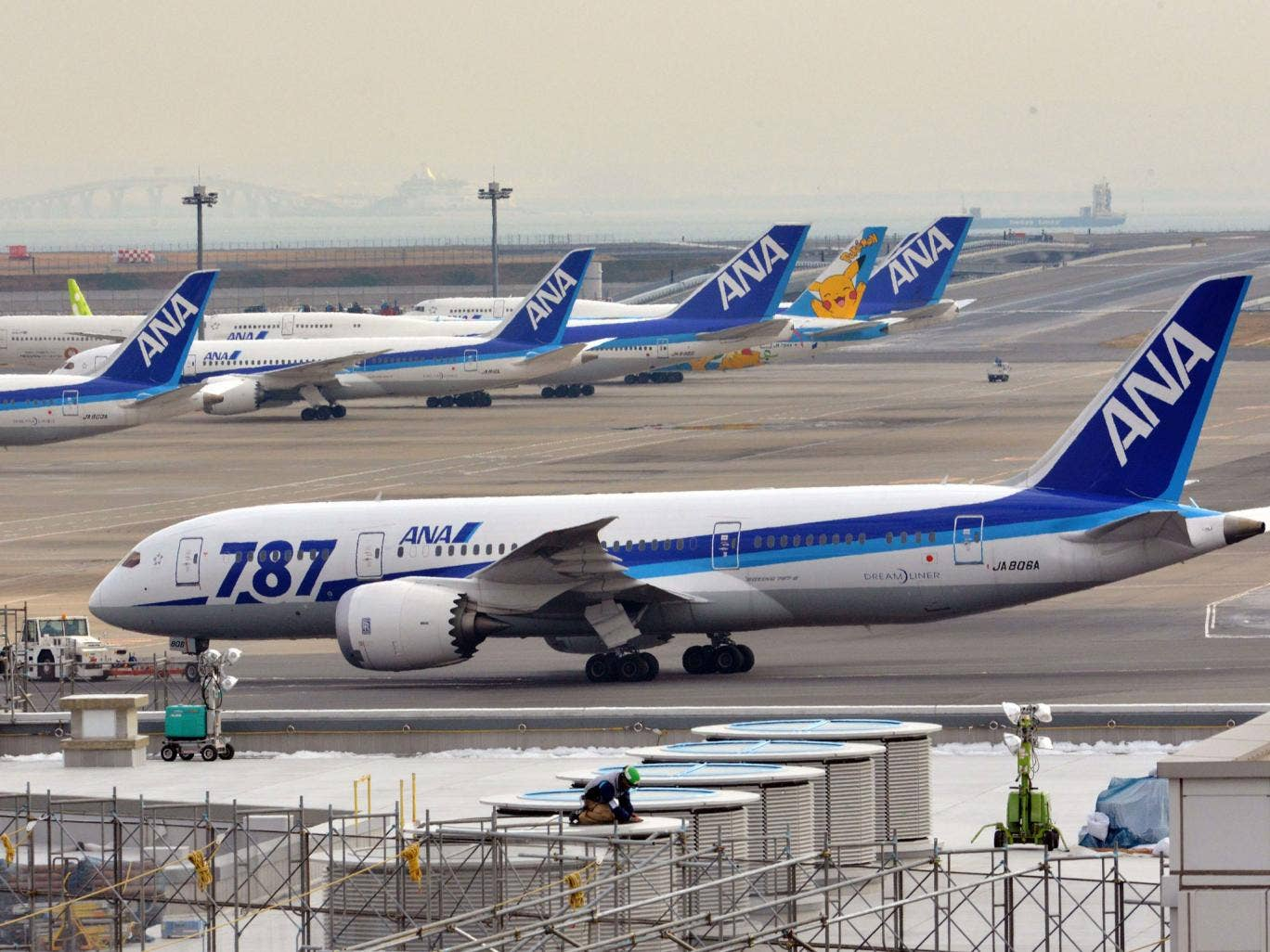 Japan's major airlines grounded their Boeing 787 planes for safety checks today
