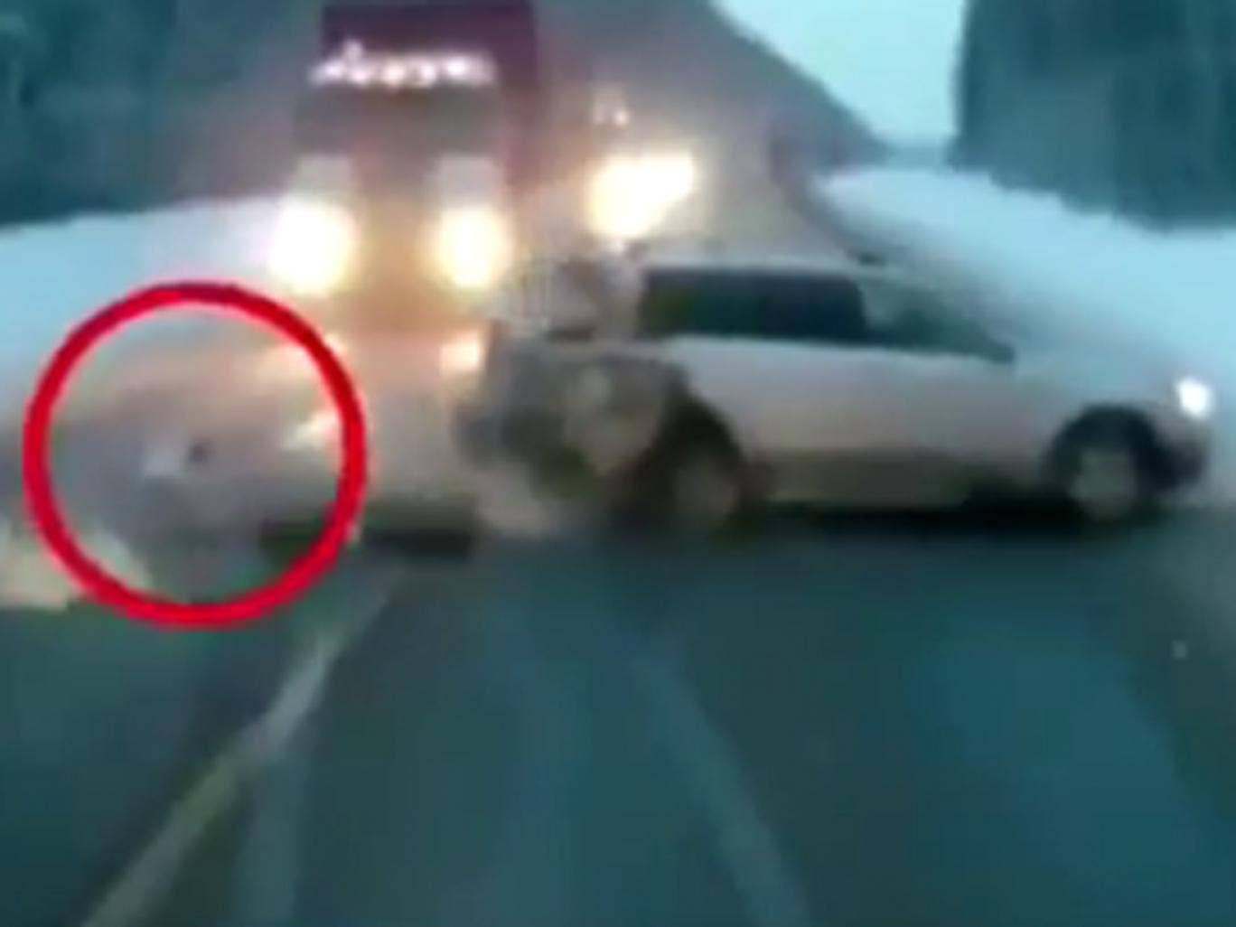 The child fell into the face of oncoming traffic