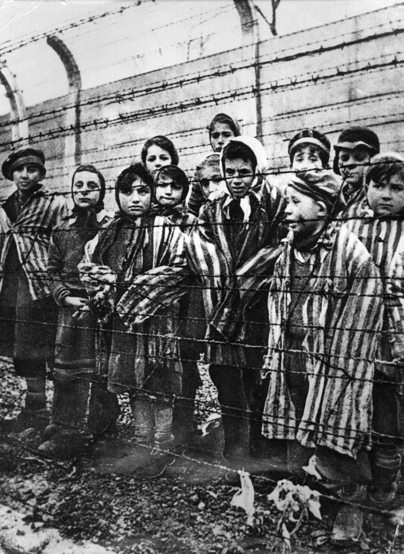 A voice from behind the wire: Auschwitz