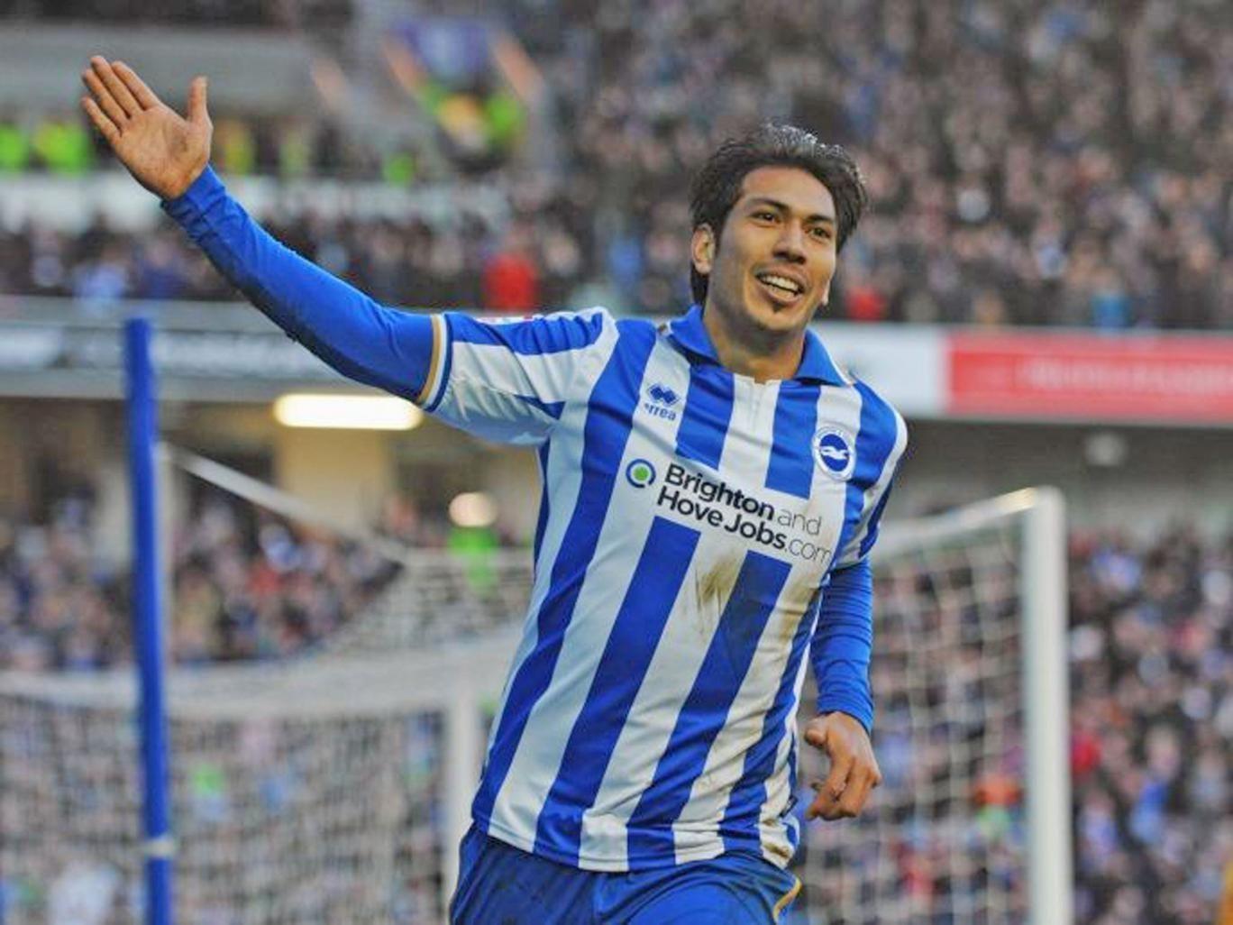 Leonardo Ulloa shone on his debut for Brighton on Saturday