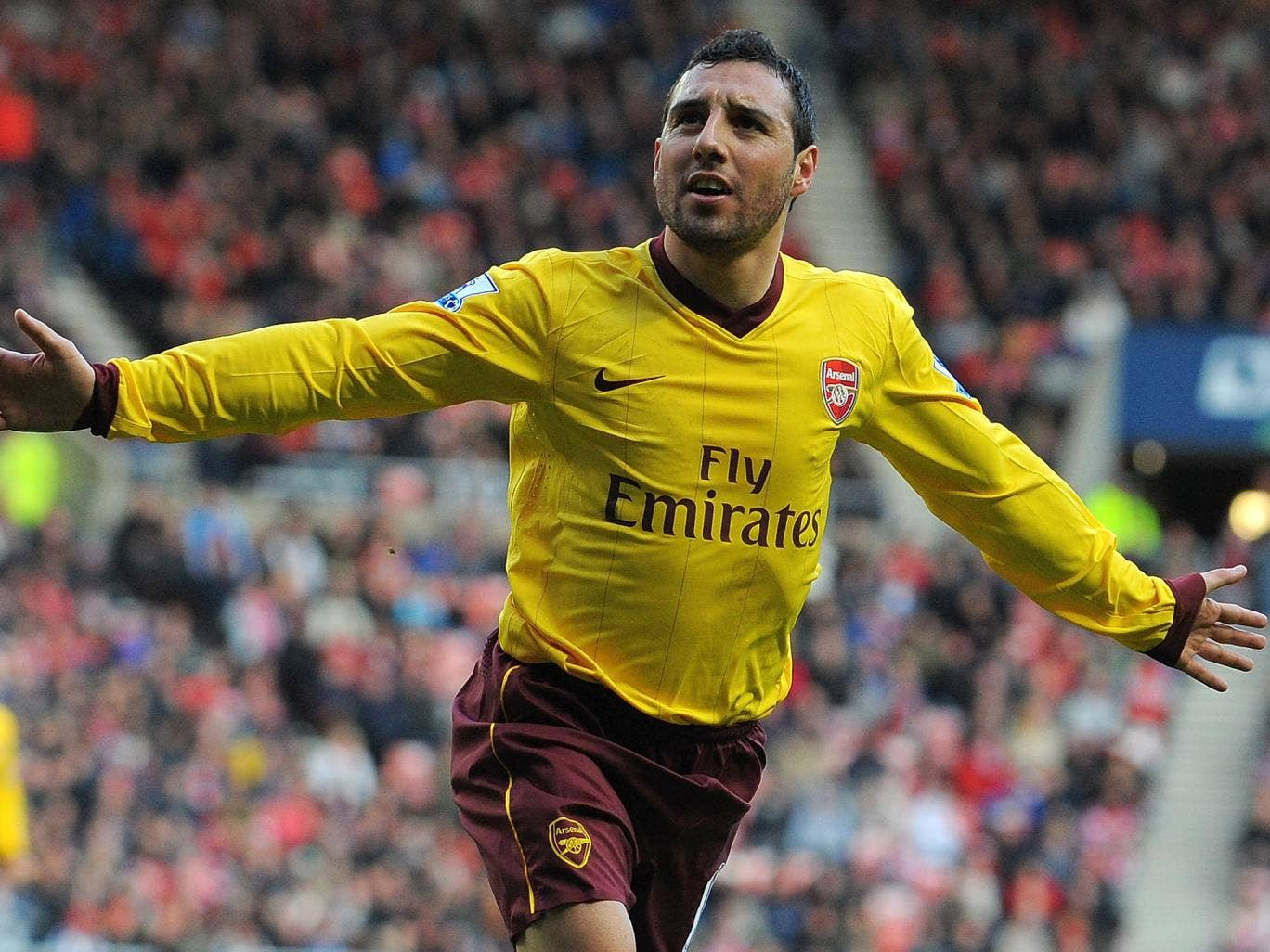 Santi Cazorla celebrates his goal for Arsenal