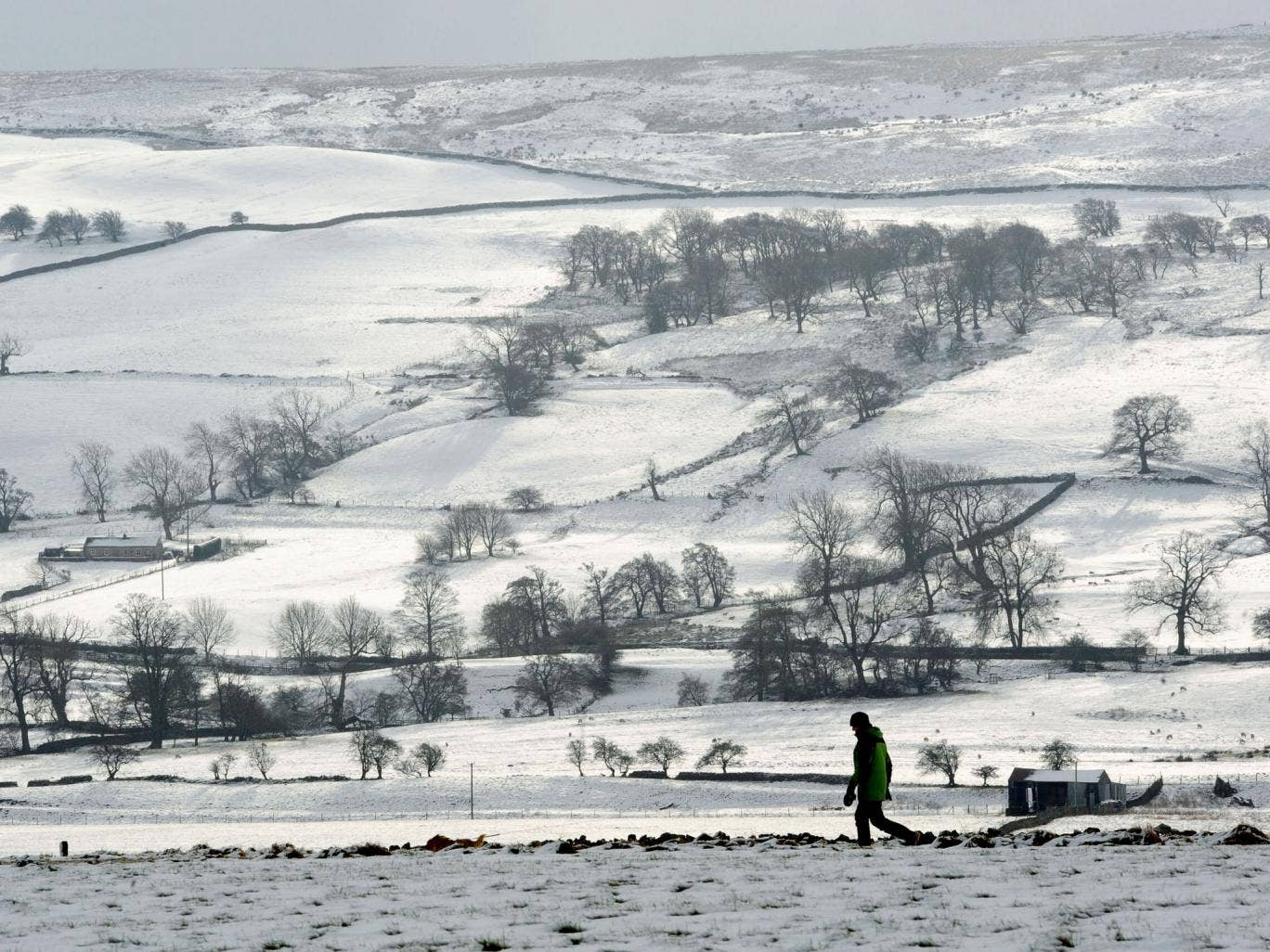 A walker takes a path along the gallops at Middleham, North Yorkshire