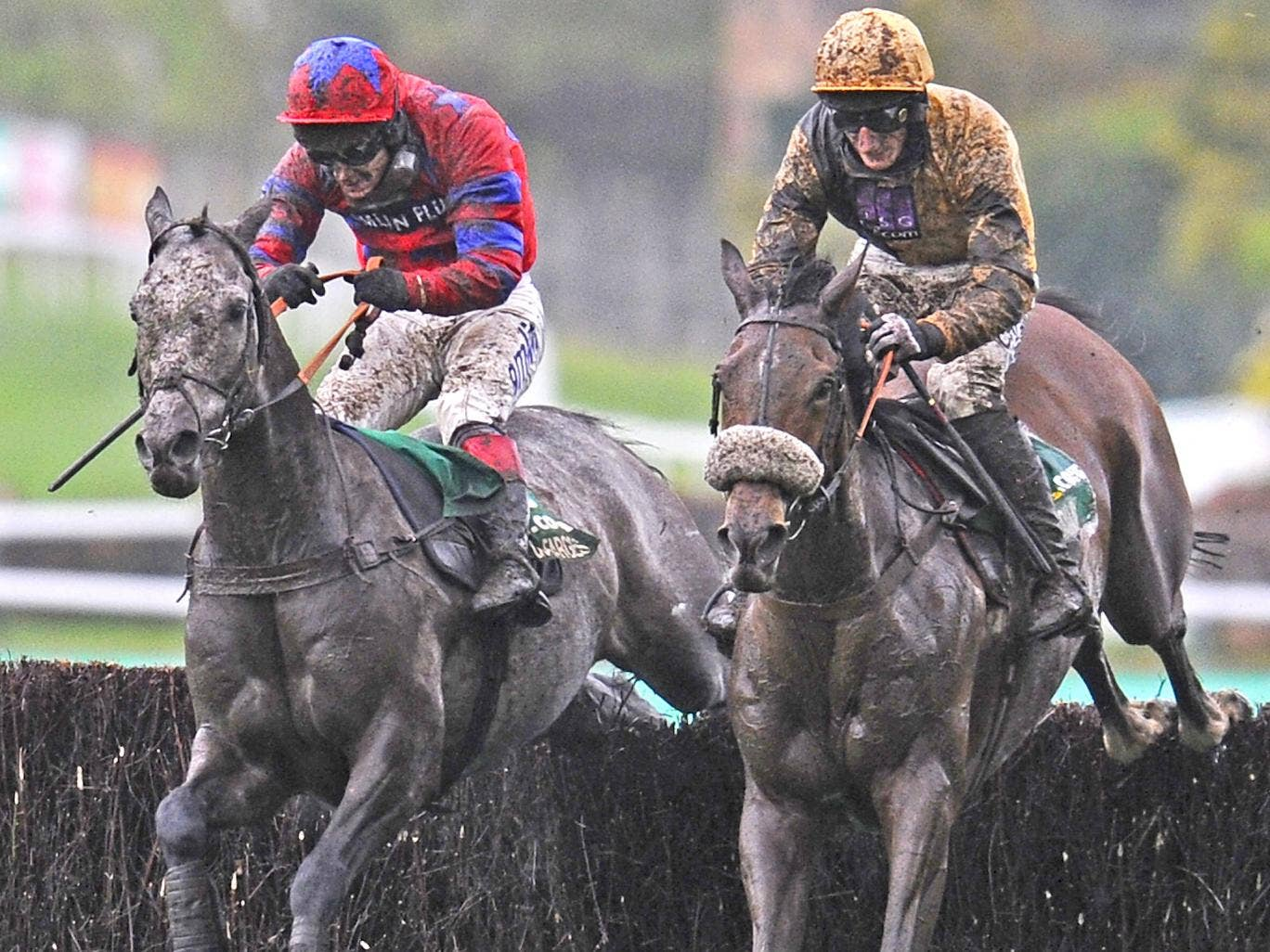 Tidal Bay, right, is very well handicapped in the National
