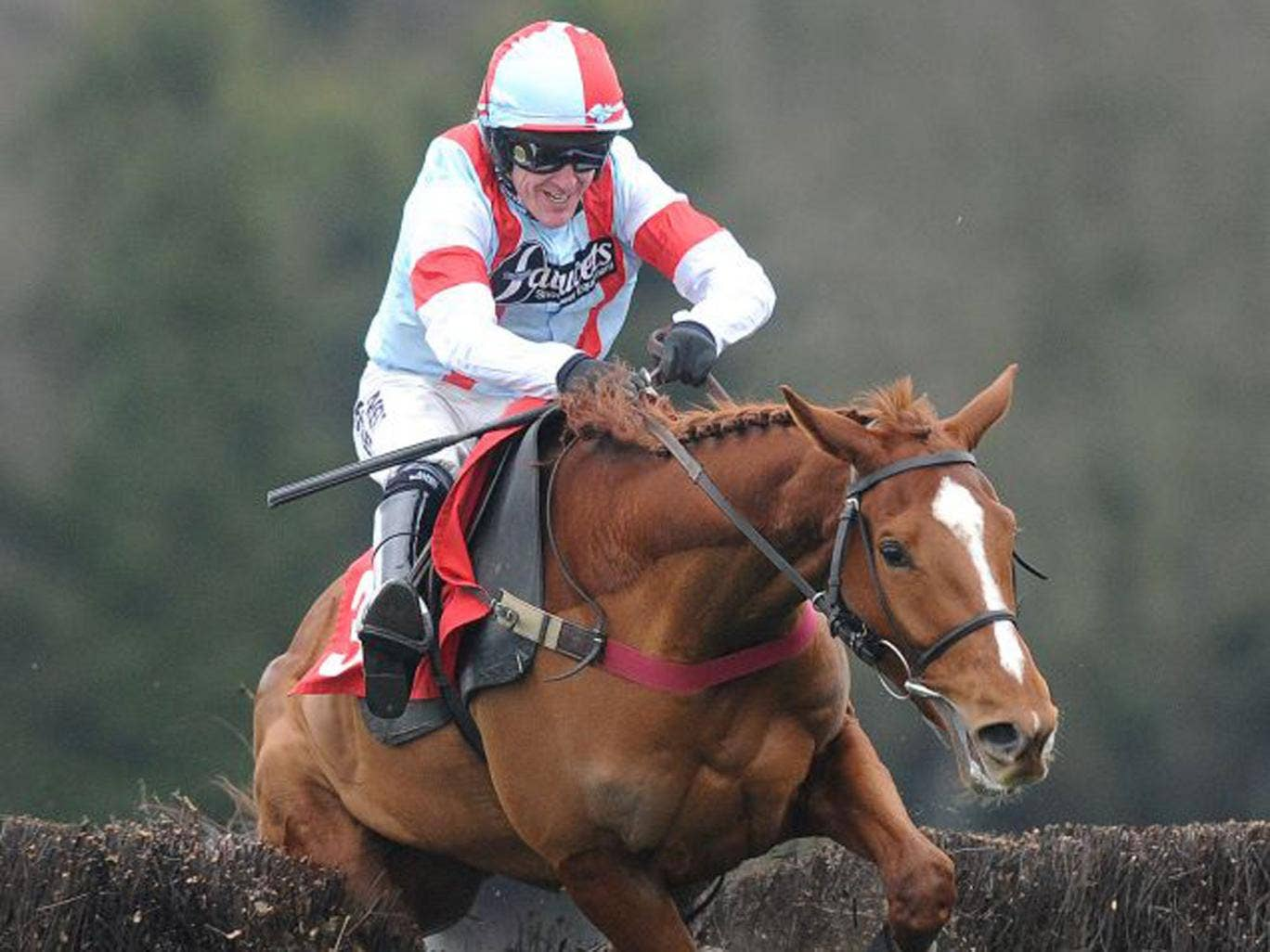 Tony McCoy sits tight as Kapga De Cerisy parts the birch at the last fence before going on to win the Kilbrittain Castle Novices' Chase at Sandown yesterday, beating the 2-5 favourite Fago by 15 lengths