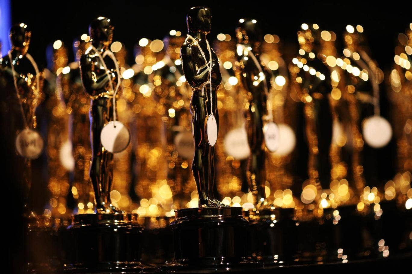 Oscars statuettes at the 2013: nominees who didn't get one still went home with $45,000 goodie bags