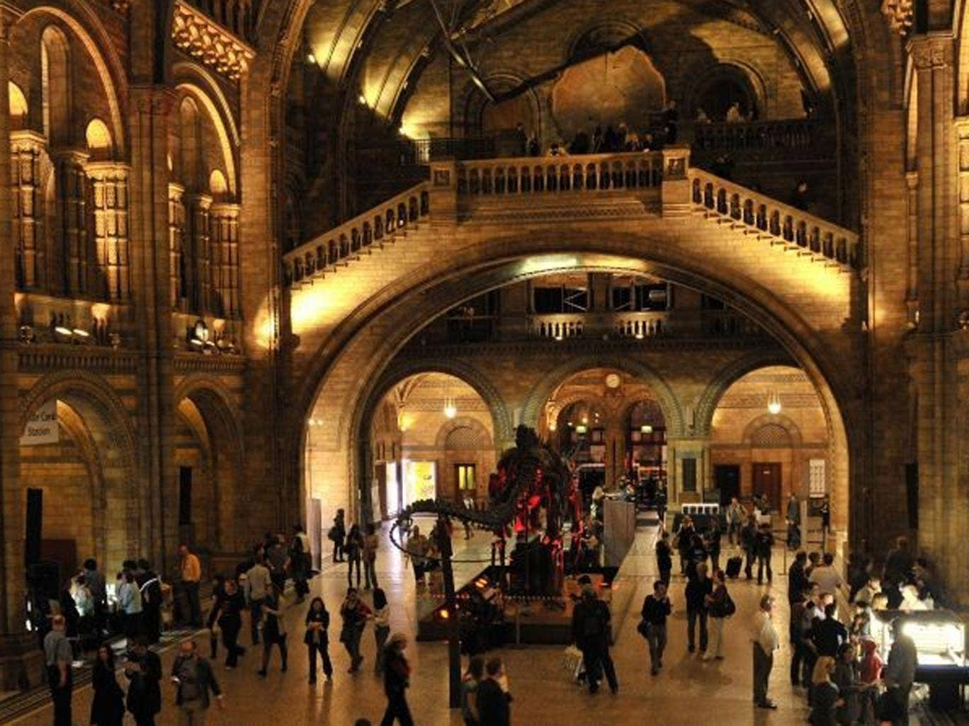 The theme of the Natural History Museum's Night Safari changes for each event, meaning you can delve deeper into your favourite aspect of natural history