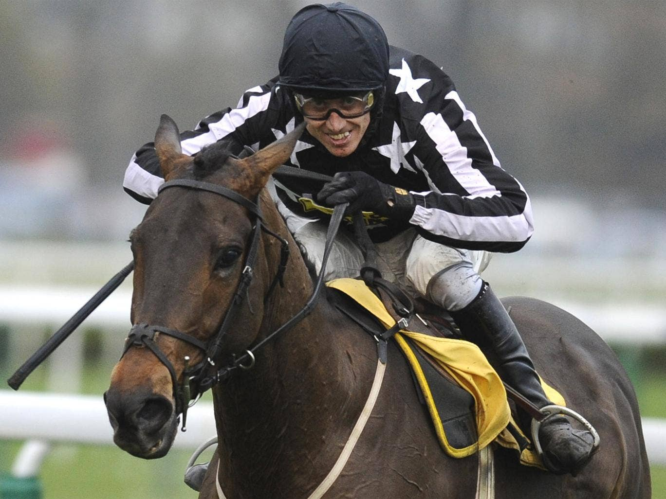 Imperial Commander won the Gold Cup in 2010