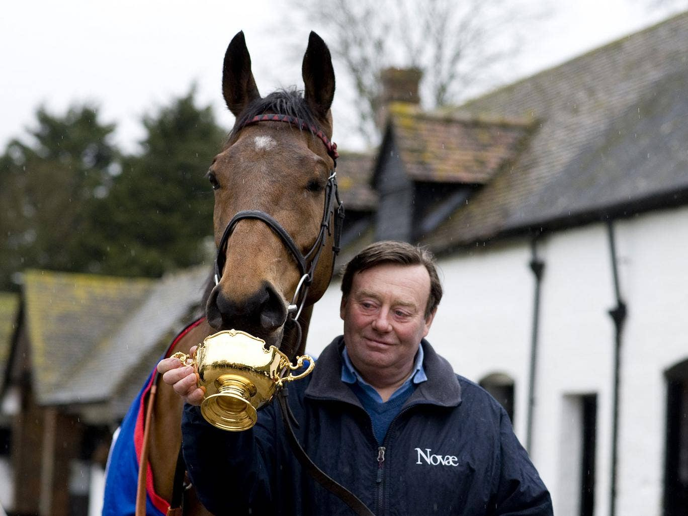 Prize asset: Just another day at Seven Barrows yard for Nicky Henderson and his Cheltenham Gold Cup winner