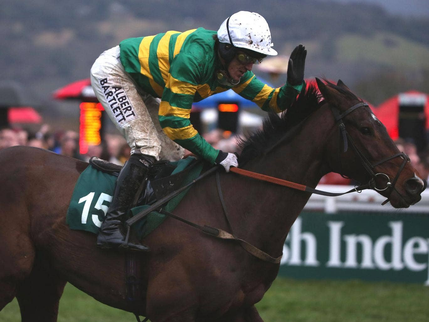 Tony McCoy pats Alderwood after winning Cheltenham's final race