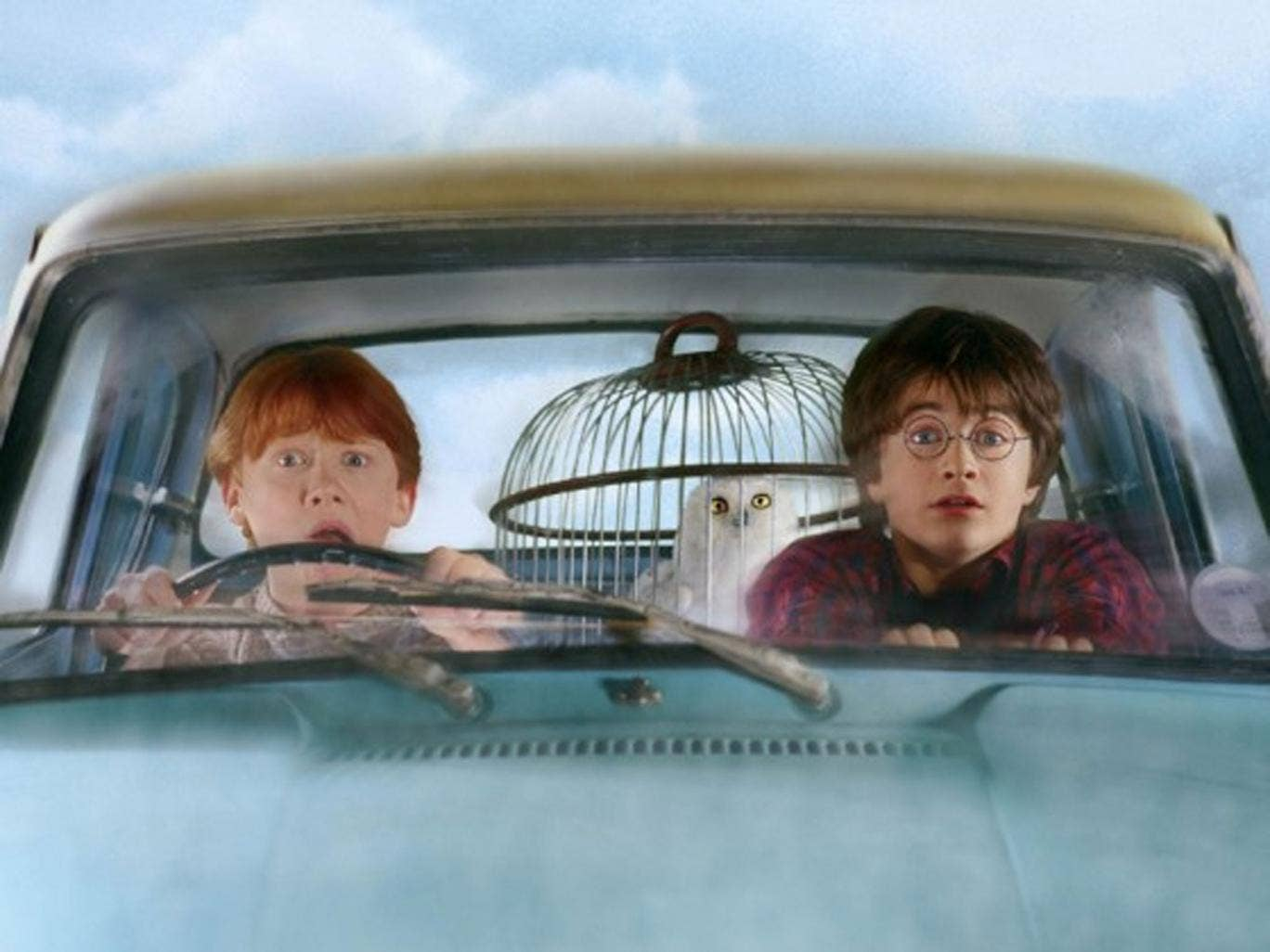 Harry Potter and Ron Weasley in Harry Potter and the Chamber of Secrets
