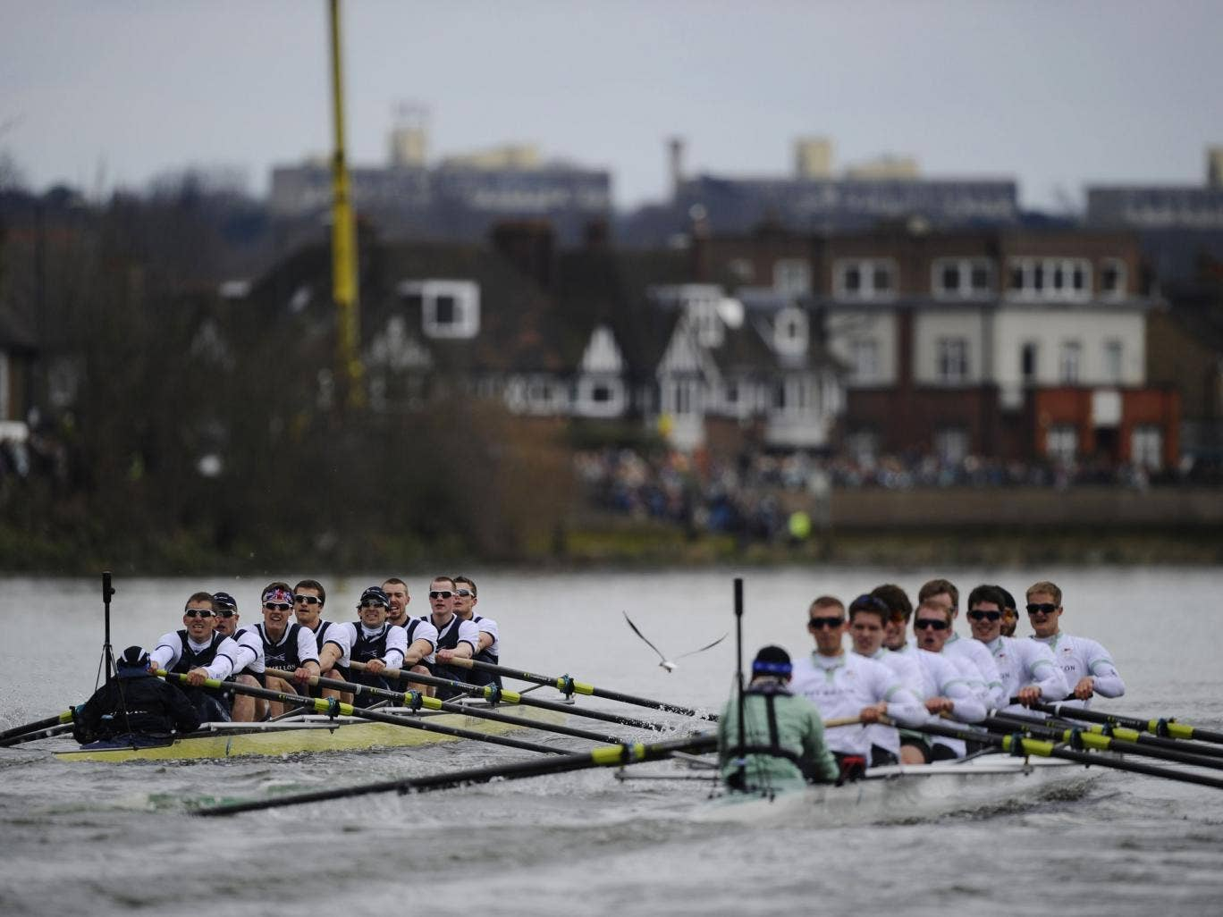 The Oxford University boat crew (L) competes against the Cambridge University crew during the annual boat race
