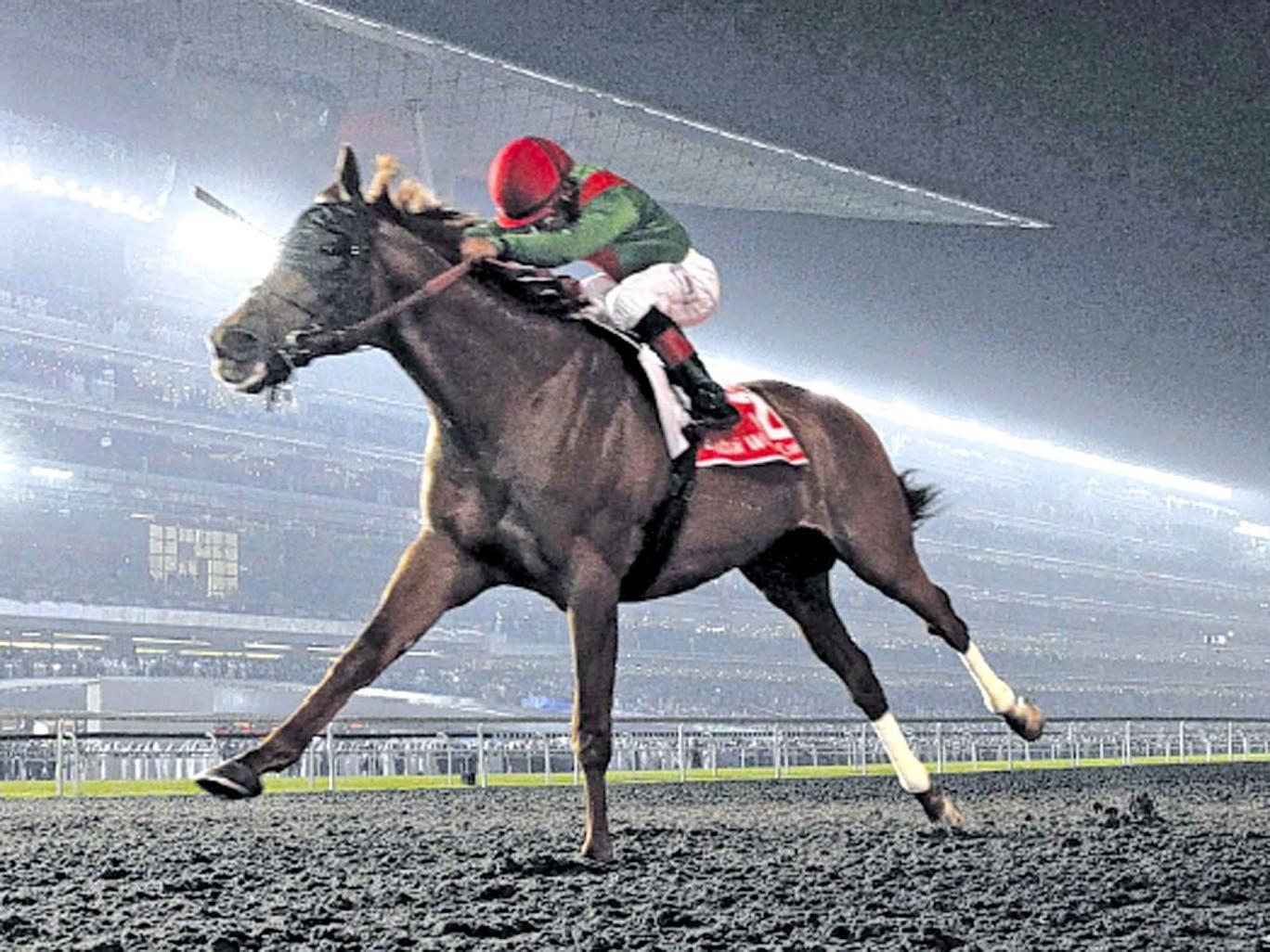 Animal Kingdom strides out to victory in Dubai under jockey Joel Rosario