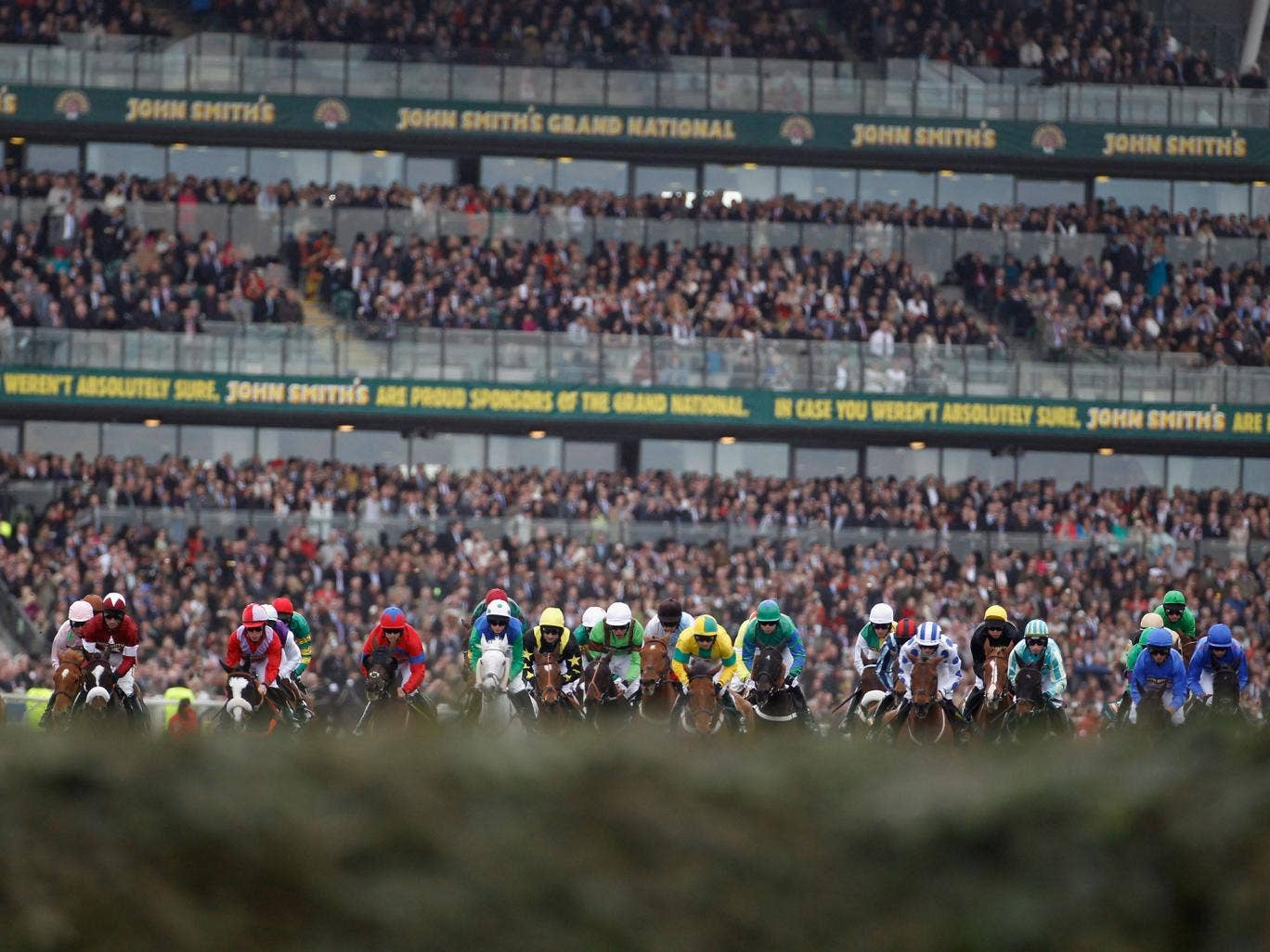Runners heading towards the first fence during 2011 Grand National, when one horse, Ornais, broke its neck and Dooneys Gate broke its back
