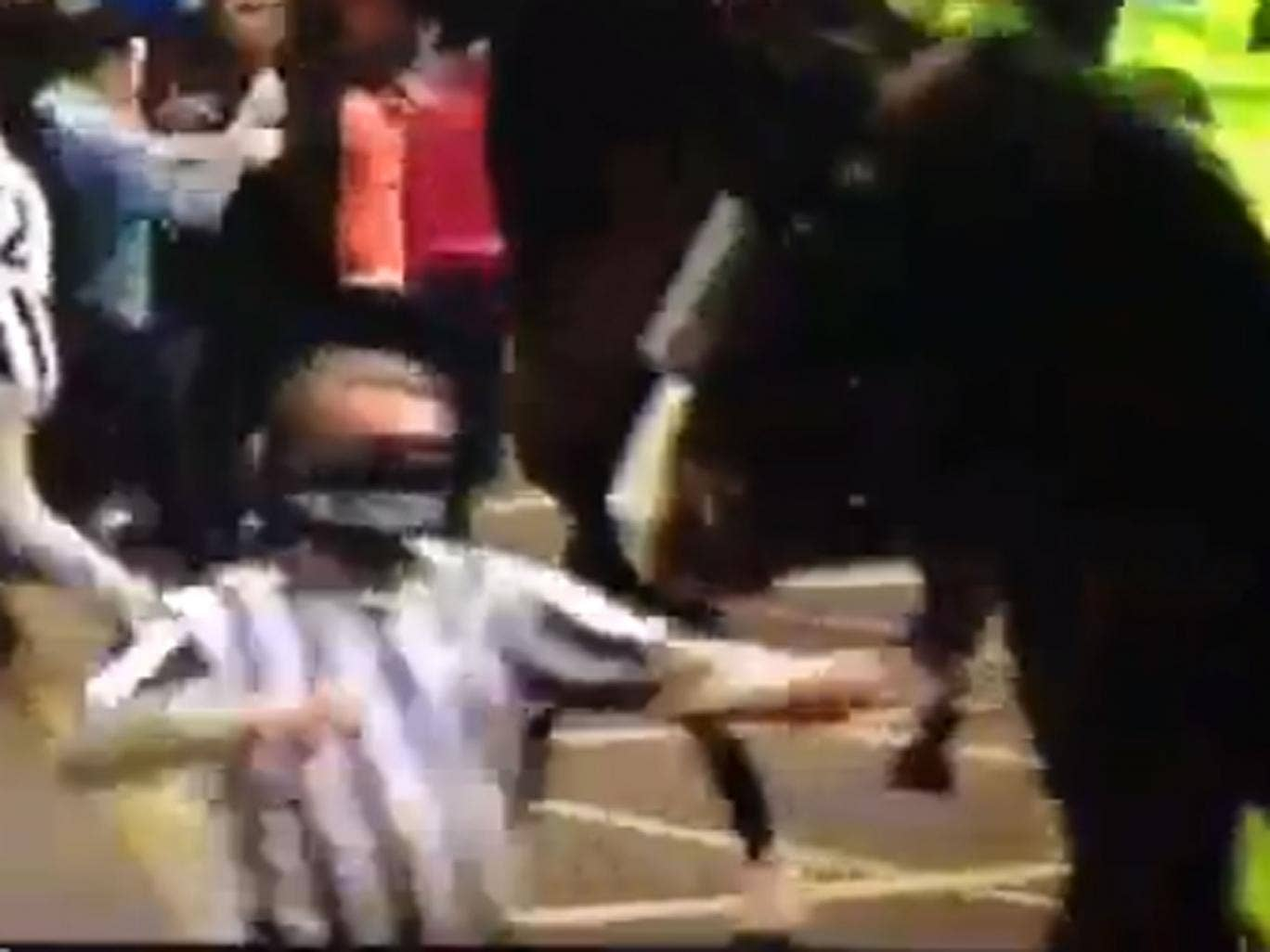 A Newcastle fan appears to aim a punch at a police horse