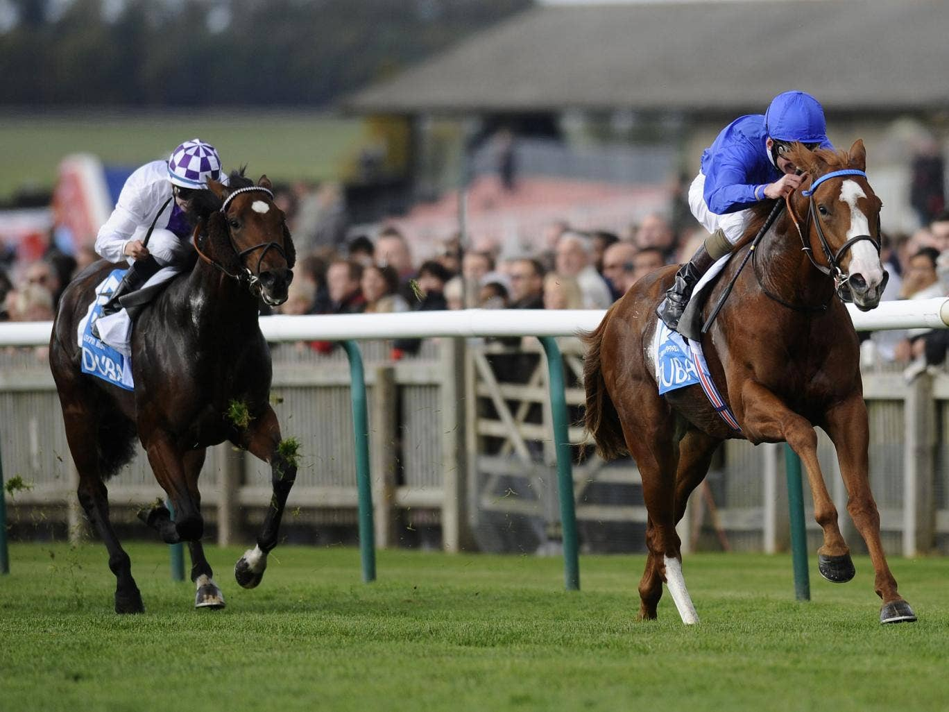 Dawn Approach winning in Godolphin blue at Newmarket
