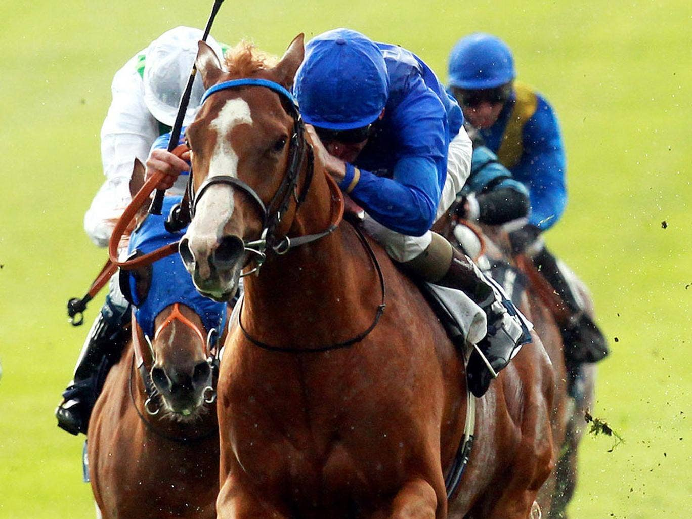 Leading lights: Dawn Approach heads for a victory few could bridle at
