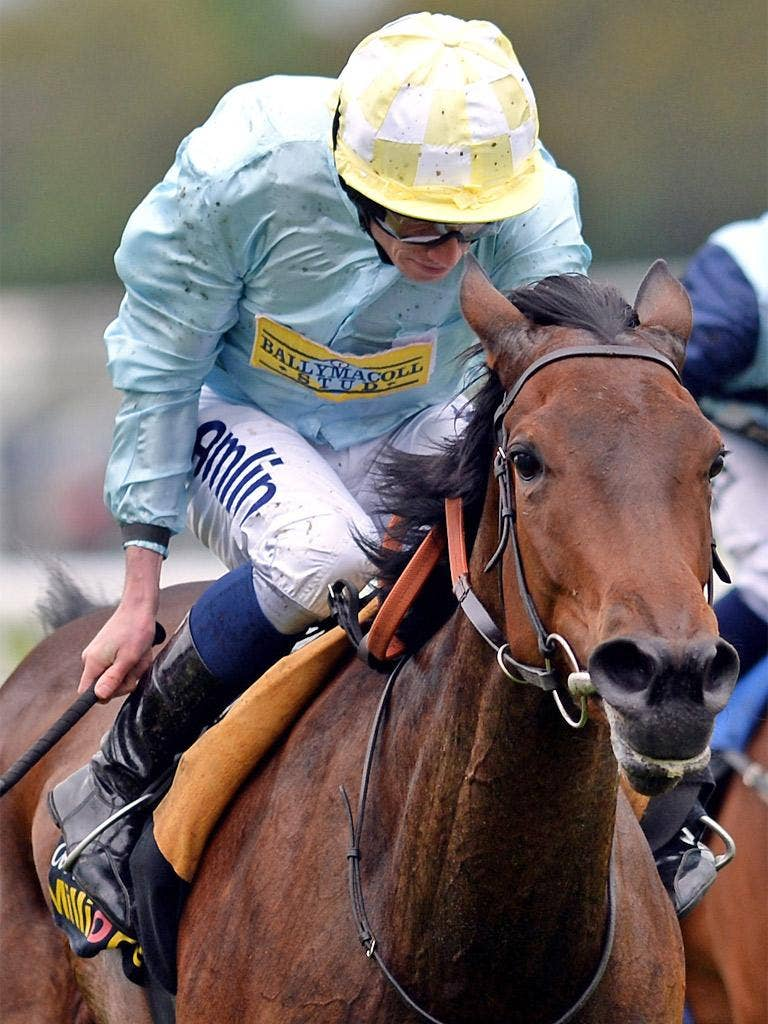 Liber Nauticus is 7-2 for the Oaks despite a laboured win at York
