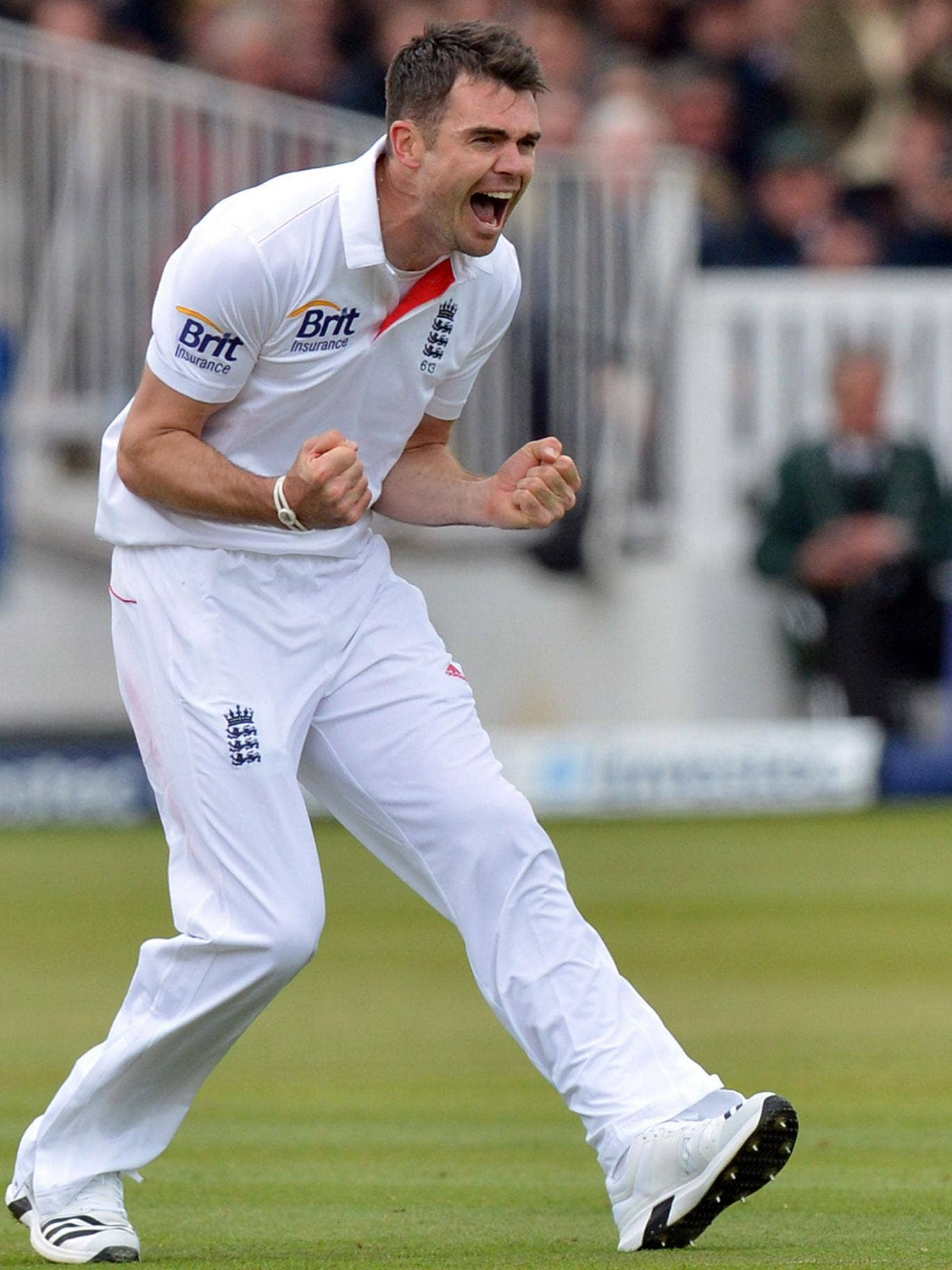 James Anderson celebrates taking his 300th test wicket, that of New Zealand's Peter Fulton, caught by Graeme Swann for 2 during the first test at Lord's Cricket Ground, London