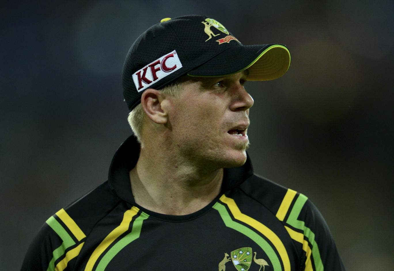 David Warner has apologised for his recent Twitter outburst and fined for his actions