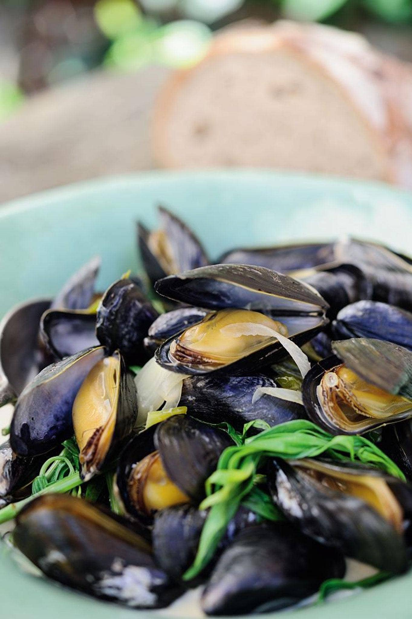 Mussels in cider with tarragon, taken from 'The Ethicurean Cookbook'