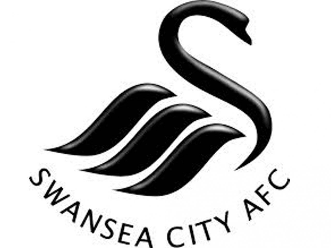 Swansea City completed transfers: Alvaro Vazquez, Wilfried Bony and ...