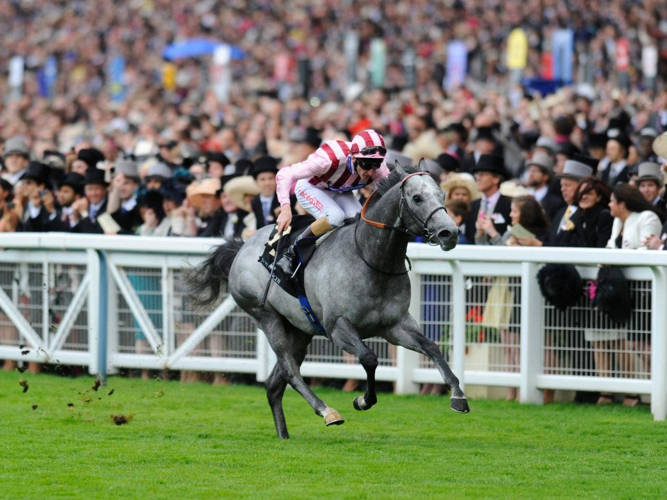 Lethal Force in the home straight on his way to the Diamond Jubilee Stakes