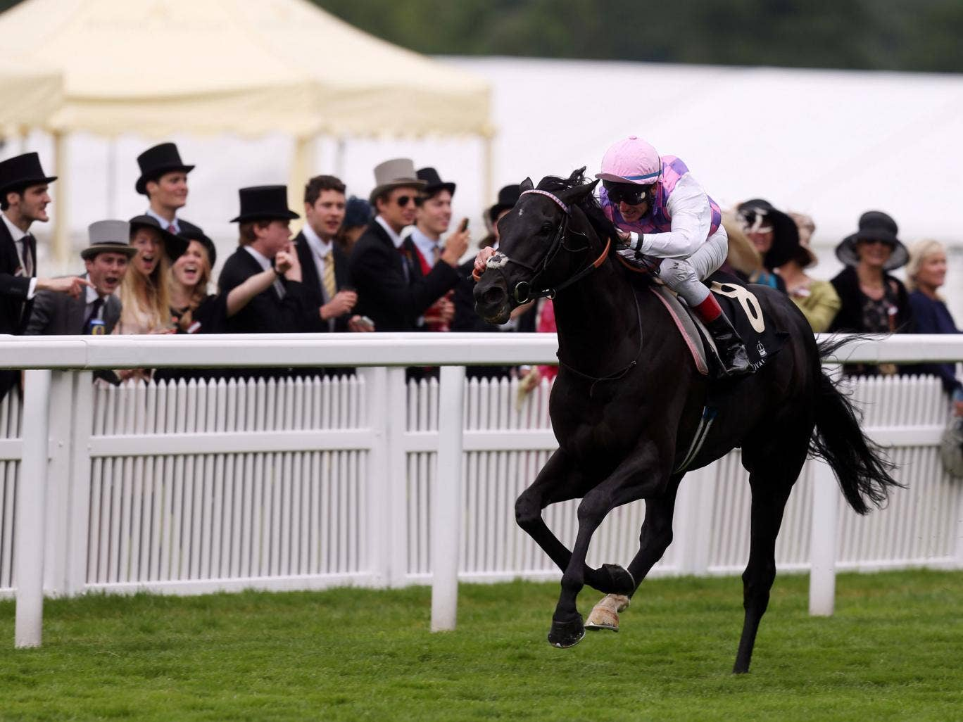 Johnny Murtagh's mount Thomas Chippendale races to victory in the Hardwicke Stakes only to collapse and die shortly