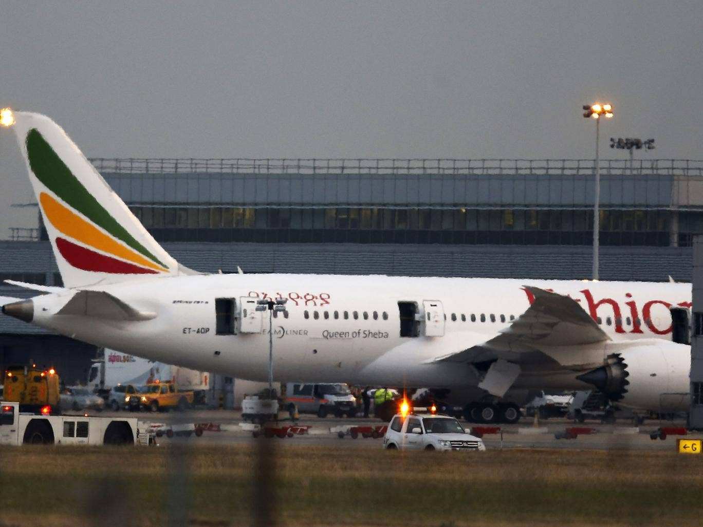 On the tarmac: The Ethiopian Airways plane at the centre of Friday's chaos atHeathrow