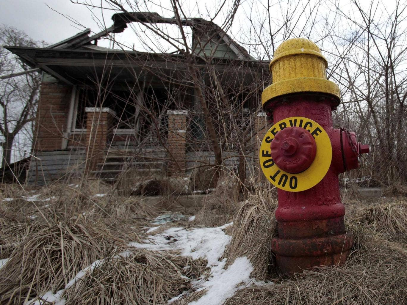 "March 2013: A fire hydrant is seen with an ""Out of Service"" sign on a blighted street on the east side of Detroit, Michigan"