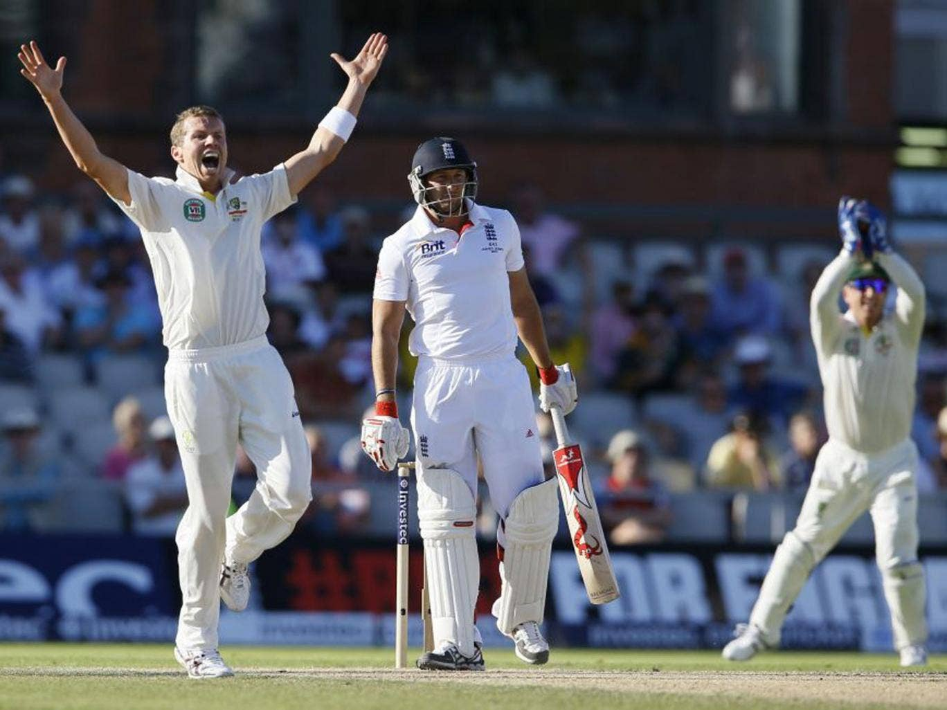 Peter Siddle appeals successfully for the wicket of Tim Bresnan late in the day