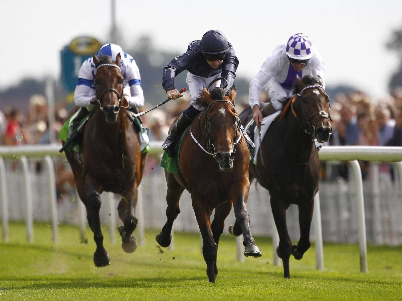 Declaration Of War (centre) proves too strong for Trading Leather (right) and Al Kazeem in the Juddmonte International
