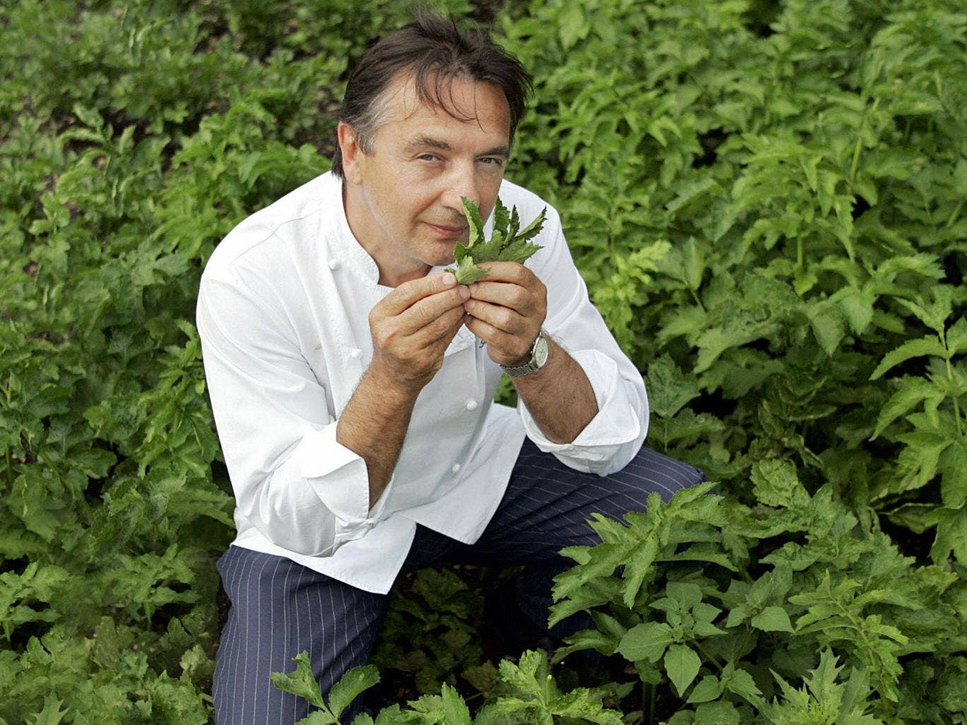 Raymond Blanc has called for gardening lessons to be made compulsory in schools