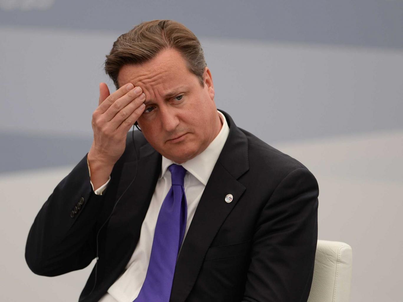 David Cameron at the G20 summit