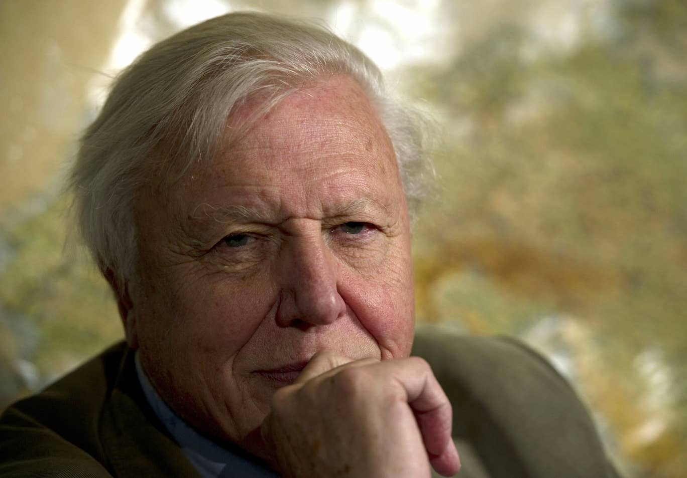 Sir David Attenborough says humans have stopped evolving due to advancement in survival rates.