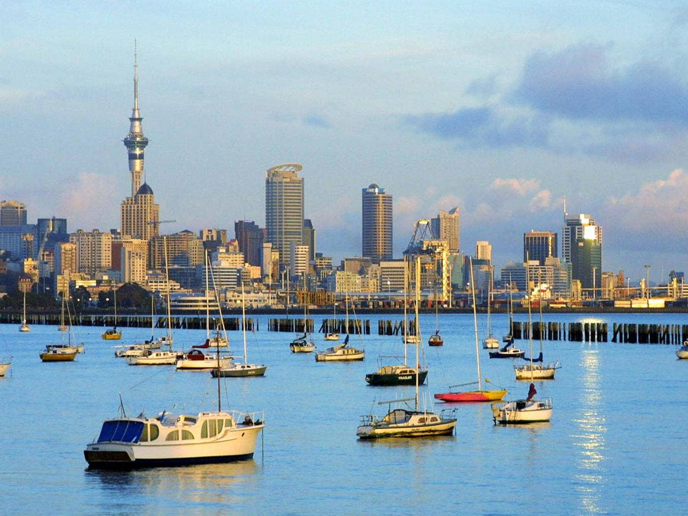 Port of call: Auckland harbour on North Island, New Zealand