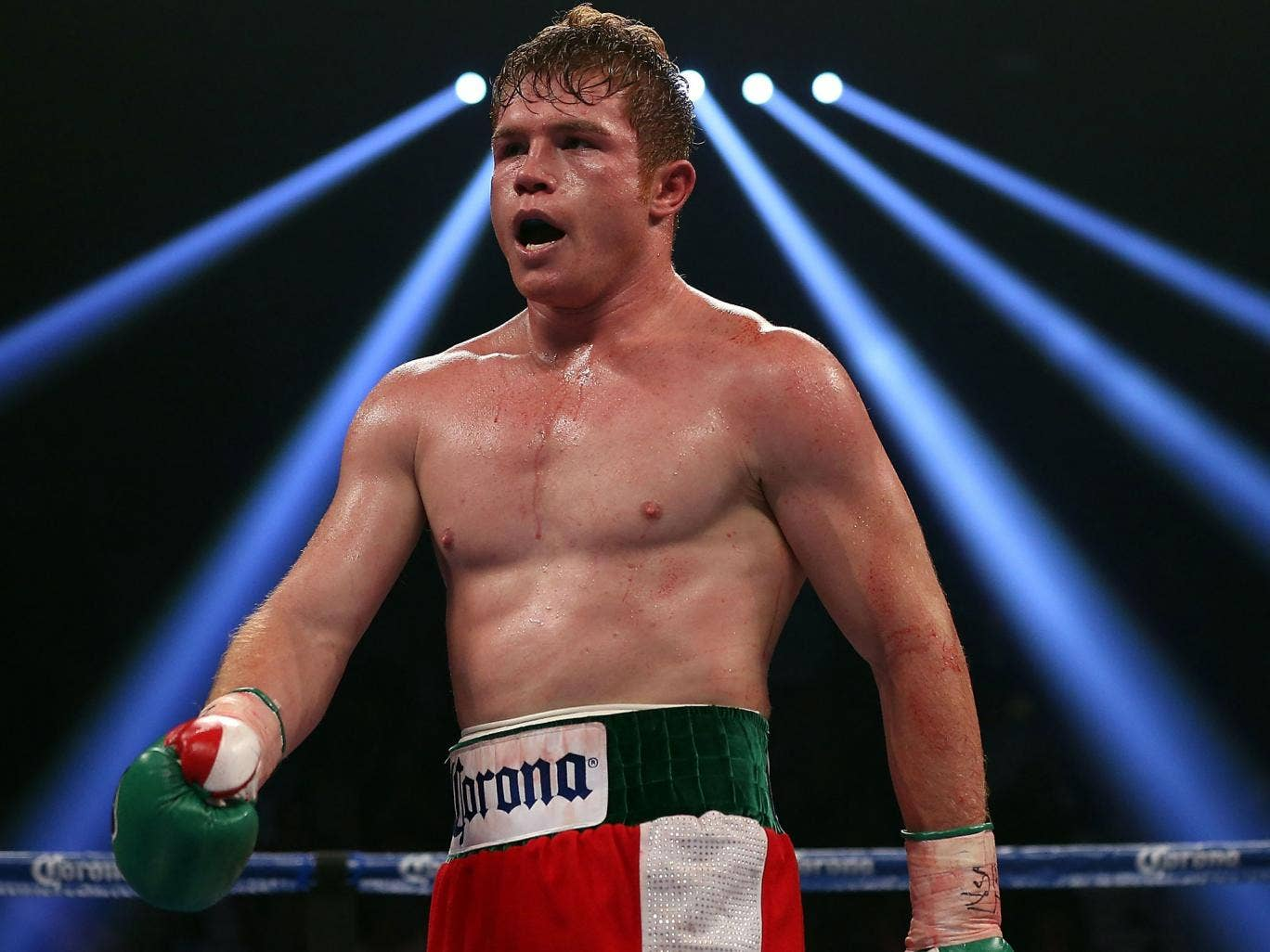 A Decade Of Floyd Mayweathers Boxing Trunks Ranked furthermore Cleto Reyes Boxing Shorts Blue as well 562239638 further Oscar Larios furthermore 237541 Mayweather Is The Real Border Patrol The Real Mexicutioner Not Pacquio. on oscar de la hoya mexican flag
