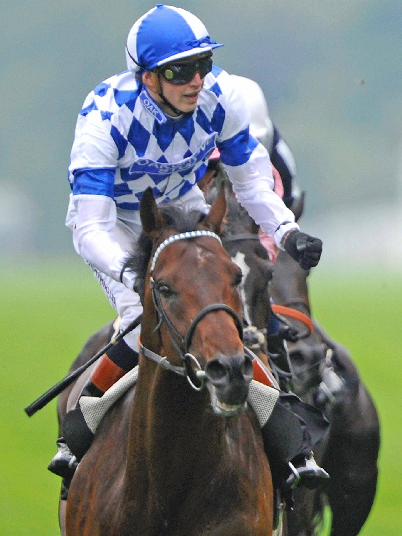 James Doyle says Longchamp would be perfect for Al Kazeem