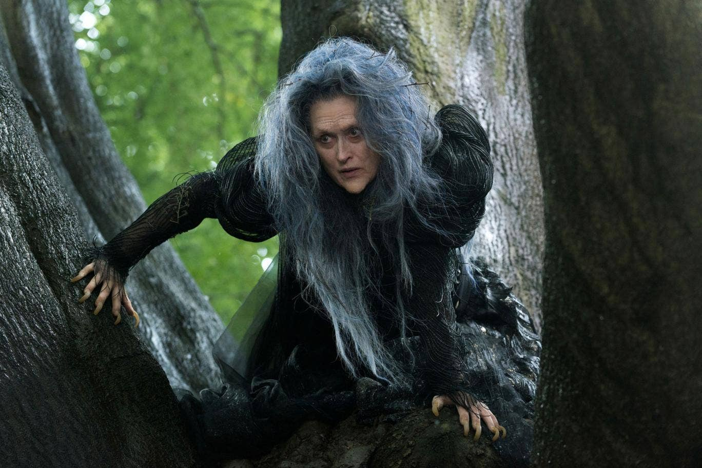 Meryl Streep stars as the Witch in Into The Woods