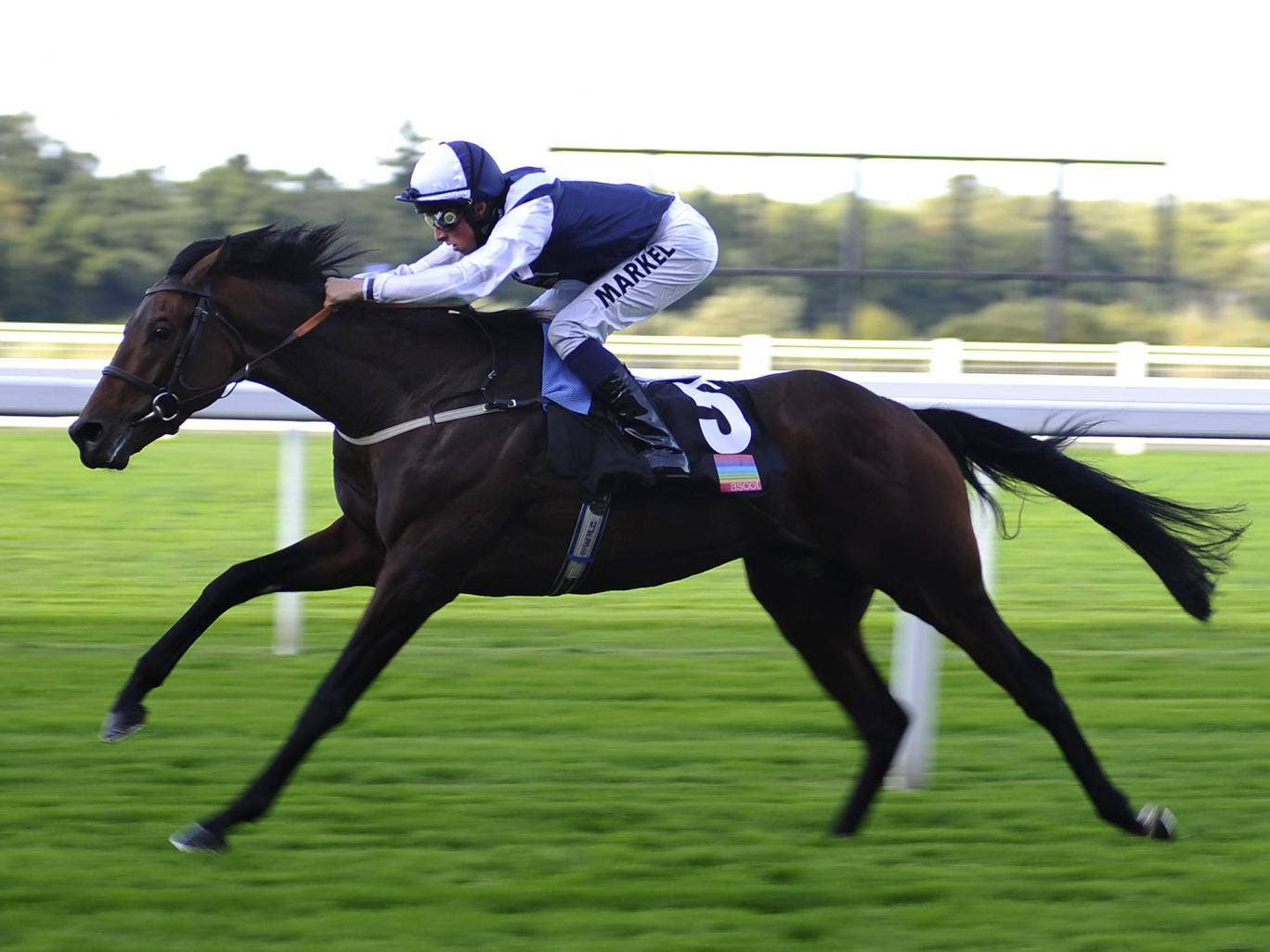 Nichols Canyon, ridden by William Buick, was a ready winner of the Listed Noel Murless Stakes at Ascot