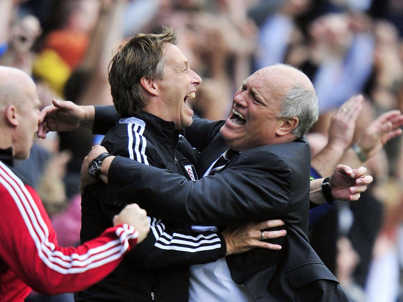 Martin Jol is overjoyed by his side's late goal
