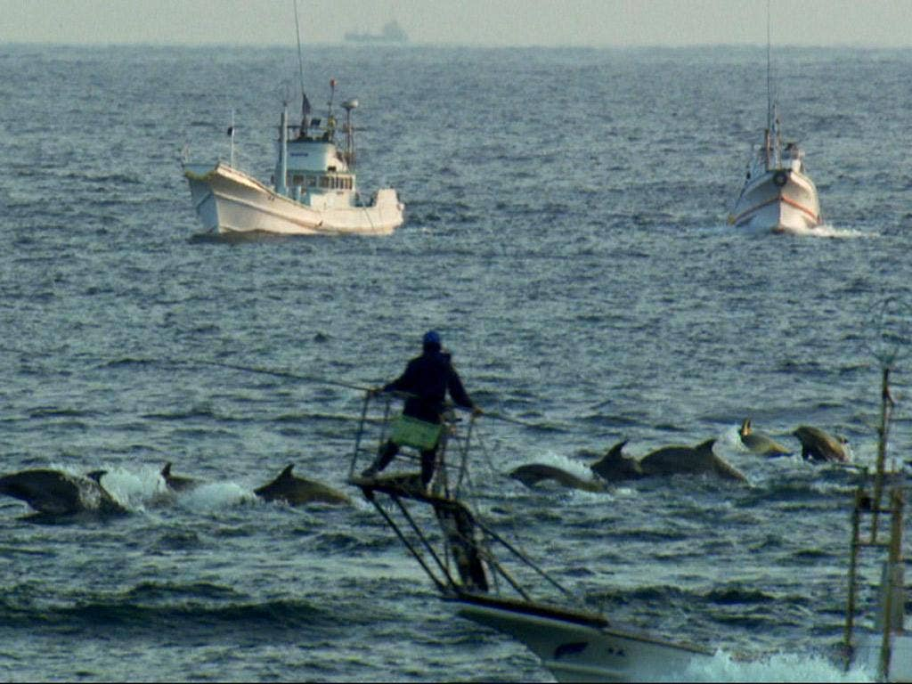 A scene from the Oscar-winning documentary 'The Cove', showing dolphin hunters off the coast of Taiji