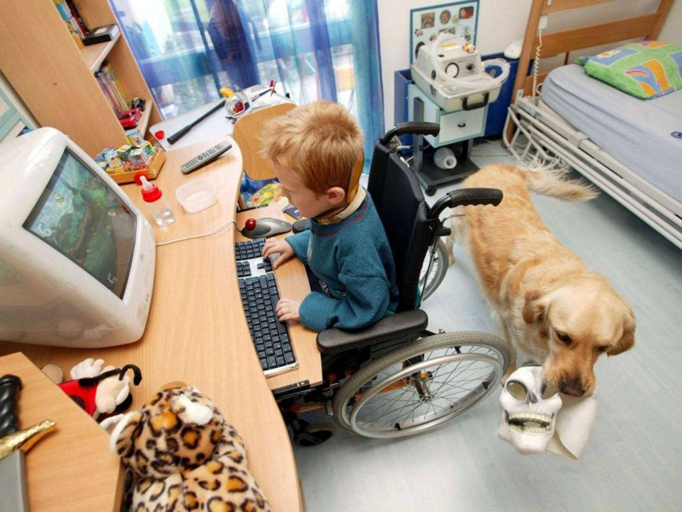 Six-year-old Alexis Martin's life has been transformed by Robot, his assistance dog provided by the charity Anecah