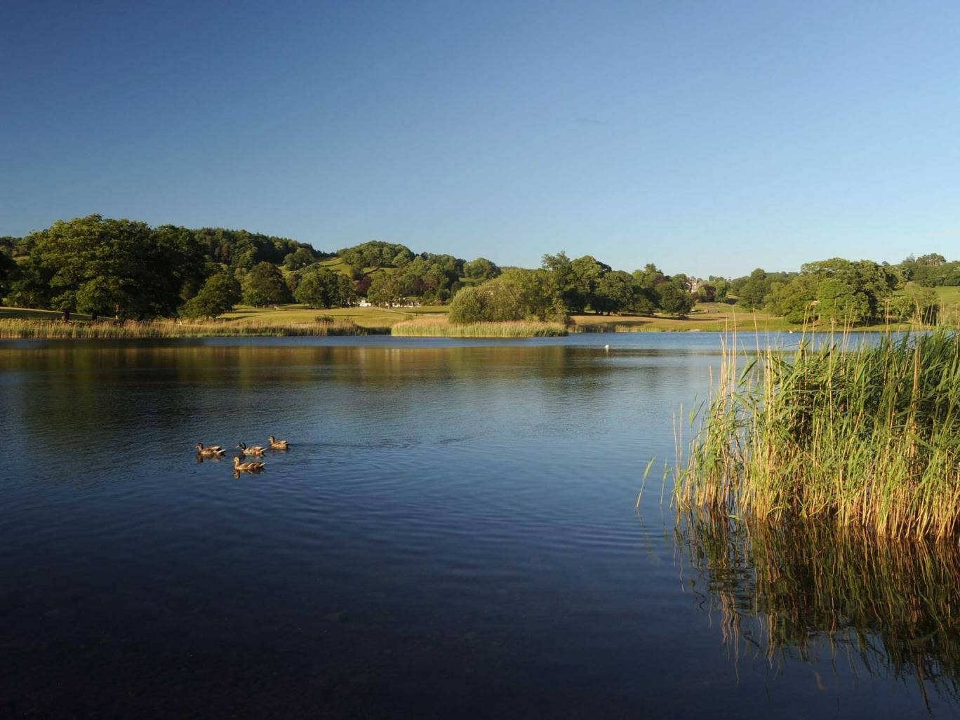 Esthwaite Water is up for sale on Ebay