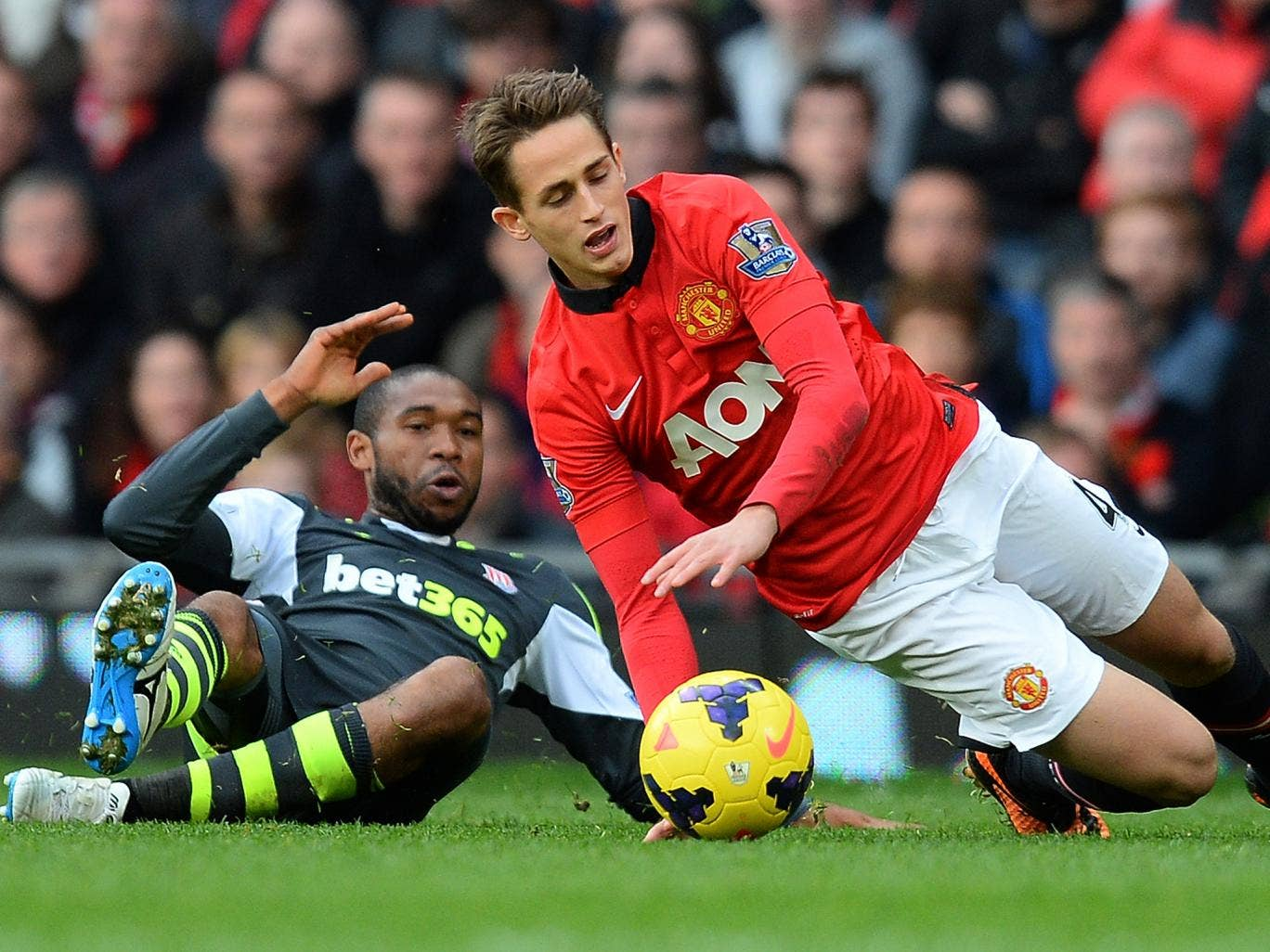 David Moyes has praised Manchester United youngster Adnan Januzaj
