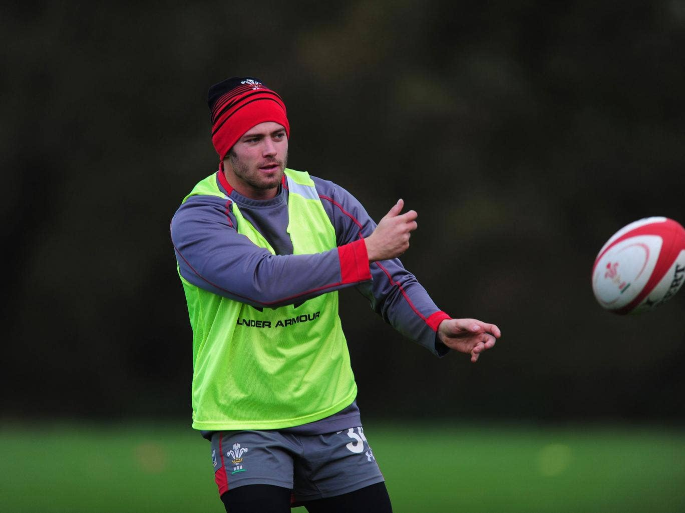 Leigh Halfpenny says: 'We really need to put out a statement' as they take on southern hemisphere teams