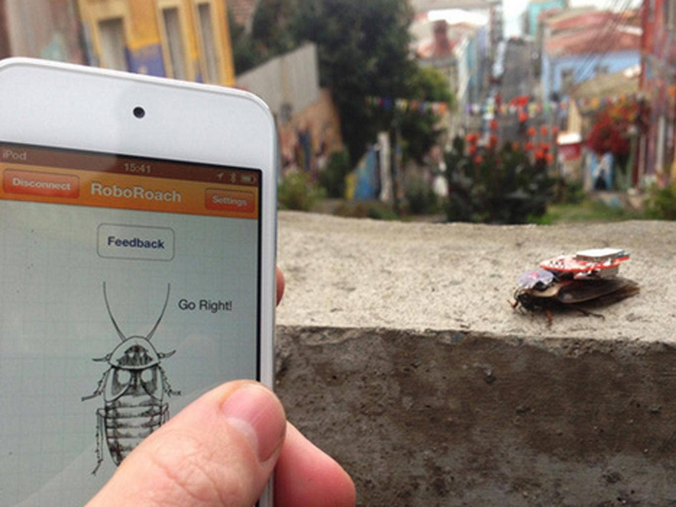 Should people control animals using smartphone apps?