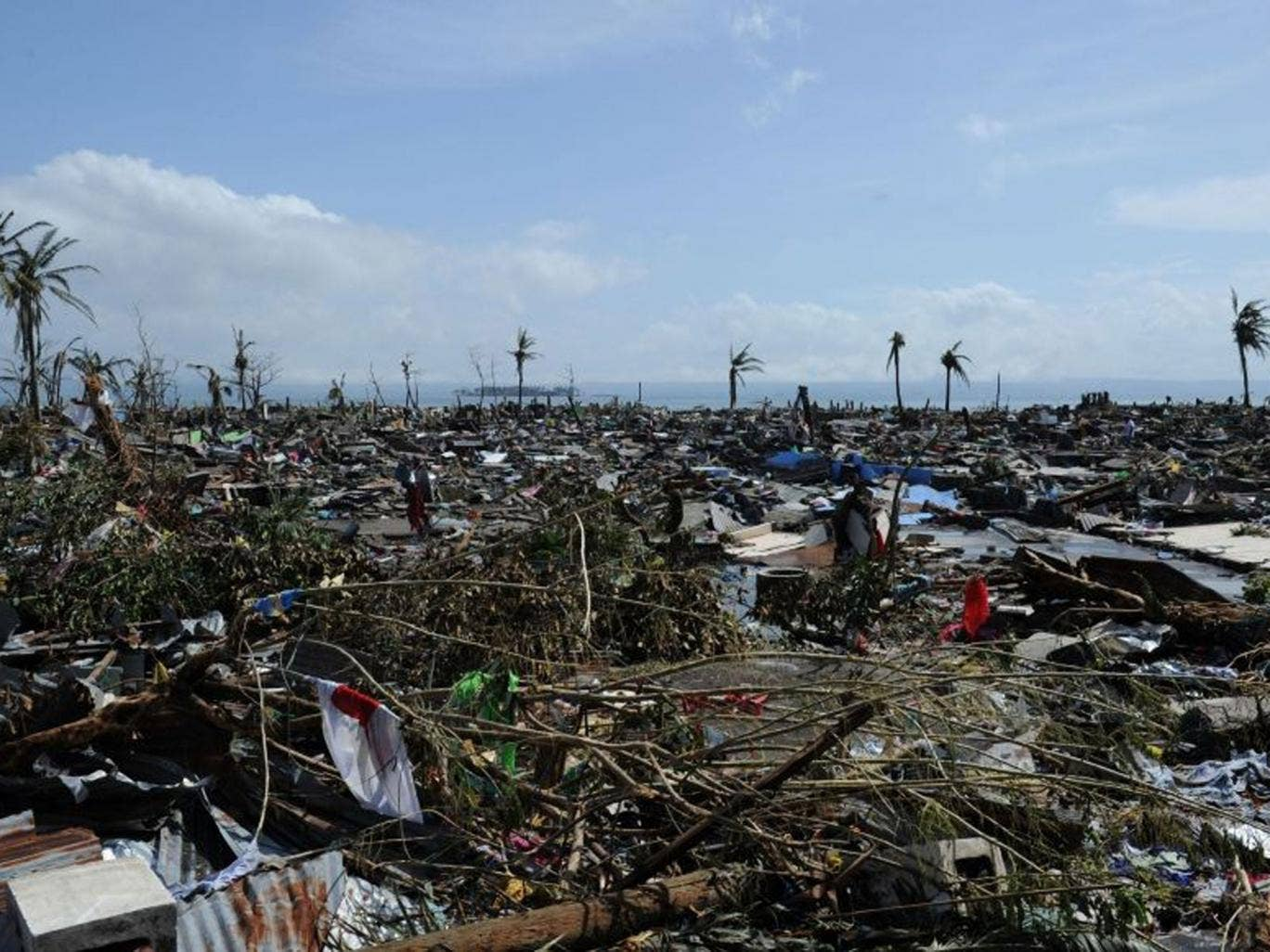 A general view of flattened houses along the coastal area in Tacloban