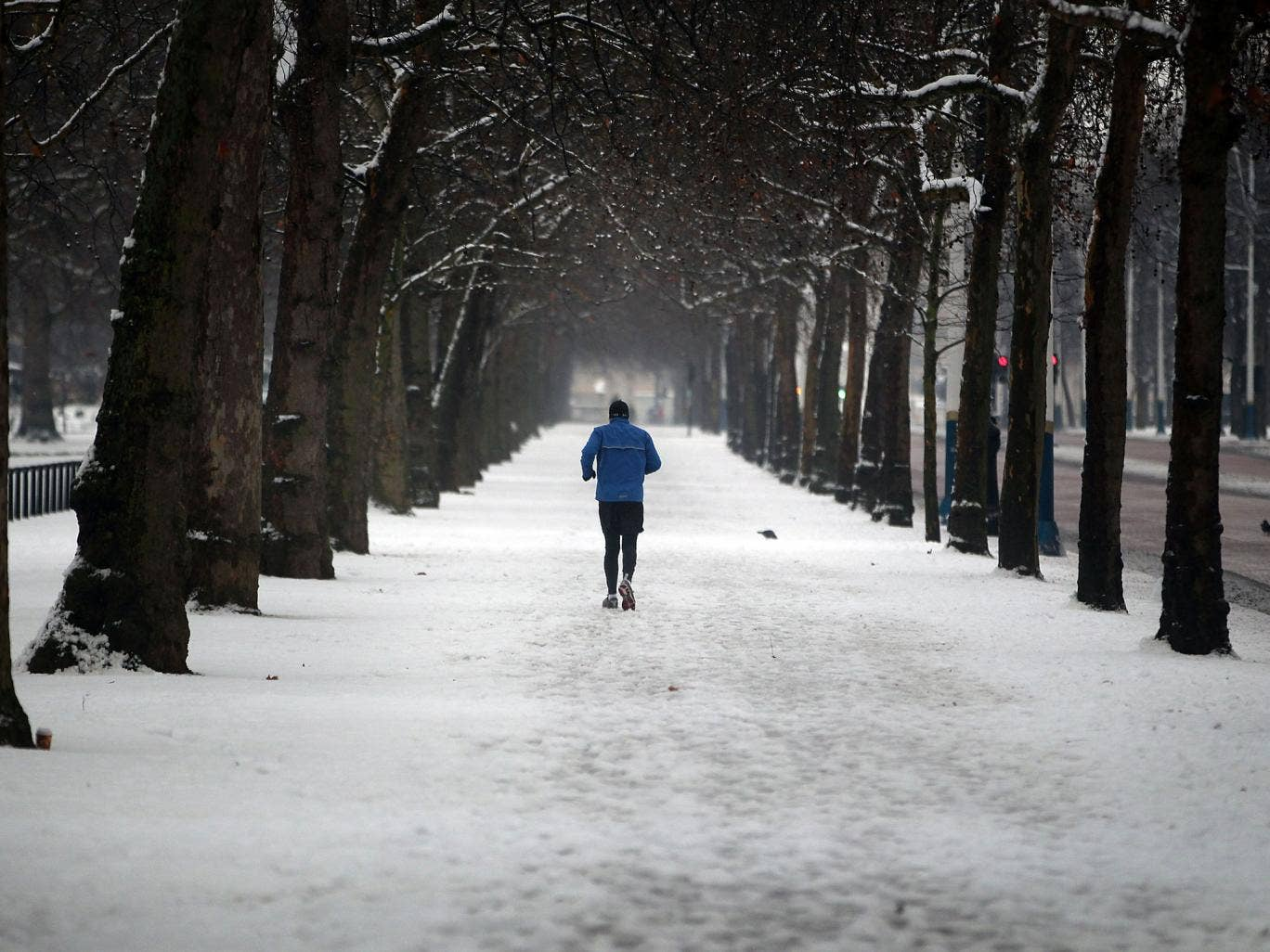 Britain will see the first low-level snow of the year next week as bitter arctic winds bring plummeting temperatures accompanied by rain, sleet and snow.